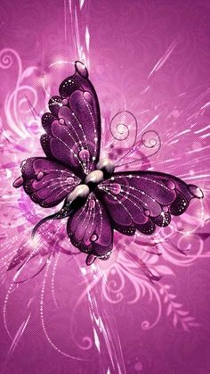 Purple batterfly Whatsapp background