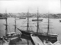 View of Johnston's Bay and Balmain from the CSR works, circa 1880s