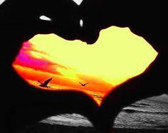 Color Splash Photo:  This Photo was uploaded by scene_zombie_with_tutu. Find other Color Splash pictures and photos or upload your own with Photobucket f...