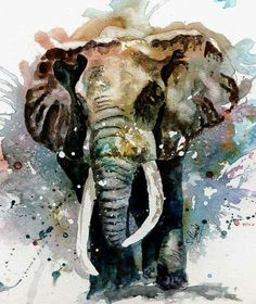 The Elephant by Steven Ponsford - The Elephant Painting - The Elephant Fine Art Prints and Posters for Sale Image Elephant, Elephant Love, Bull Elephant, Elephant Poster, Elephant Canvas, Elephant Wall Art, Watercolor Animals, Watercolor Art, Elephant Watercolor