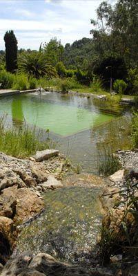 Piscine naturelle - Natural swimming pool - Orion Saint Paul de Vence. Gorgeous