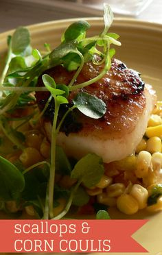 Joel Gamoran came to The Talk with a great scallop dish. Try his recipe for Sea Scallops with Sweet Corn Coulis, which you can make indoors or outside. http://www.foodus.com/the-talk-joel-gamoran-sea-scallops-with-sweet-corn-coulis-recipe/