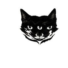 minimalist absurdist ink print Cat ($30) ❤ liked on Polyvore featuring home, home decor, wall art, ink drawing, cat eye drawing, eye drawing, minimal home decor and paper wall art
