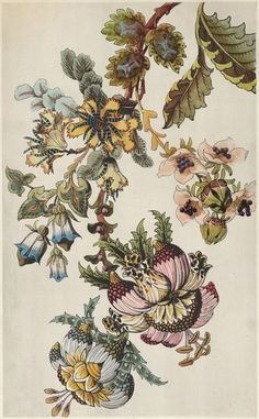 TROWBRIDGE - Japanese Fantasy Flowers - These colourful Art Deco floral images are fine art giclee reproductions of original designs used to produce hand-painted wallpaper and are from the TROWBRIDGE antique archives. in Silver Leaf Mirror (Frame Code: 96 Hand Painted Wallpaper, Painting Wallpaper, Japanese Flowers, Japanese Art, Botanical Flowers, Botanical Prints, Art Chinois, Illustration Blume, Art Japonais