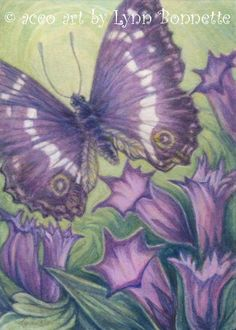 Purple Empire Butterfly Original ACEO painting  Date of work: April 2014 Sold - Thank you Purple Empire Butterfly & Purple Trumpet Flowers. NOTE: I wanted to say that all descriptions are from Lynn. I just pin the ones I love. Magnificent works!