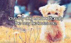 I've had two...and loved them both!!!  A Lab and a German Shepherd.  Both great dogs!!! <3