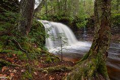 A spring view of Rock River Falls, Rock River Wilderness in Upper Michigan Michigan Waterfalls, Waterfall Photo, State Of Michigan, Laundry Hacks, Upper Peninsula, Travel Bugs, Naturally Beautiful, Lighthouses, Natural Wonders