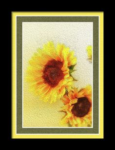 Colorful Framed Print featuring the photograph A Touch Of Sun by Marnie Patchett