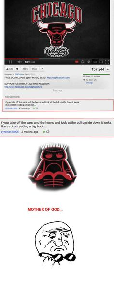"""""""The Chicago Bulls"""" 