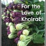 For the Love of Kholrabi – A Carrot and Kholrabi Slaw Recipe
