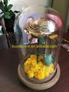 Hot Sale Custom Printed preserved rose All As youR requirements DECENT Super Great Yunnan with good after service