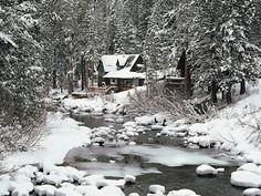 Riverside Forest Home In Winter HD Desktop Background wallpaper Snow Cabin, Winter Cabin, Winter Snow, Winter House, Forest Path, Forest House, Tree Forest, Full Hd Wallpaper, Cabins And Cottages