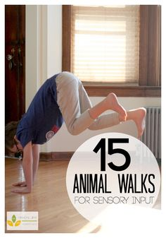 15 Animal Walks for Sensory - Love these indoor kids exercises for getting kids moving and encouraging pretend play! Sensory Motor, Sensory Diet, Gross Motor Activities, Movement Activities, Gross Motor Skills, Sensory Activities, Toddler Activities, Sensory Play, Therapy Activities
