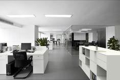 The Open Plan Office – The problem with Desk Partitions vs Acoustic Panels