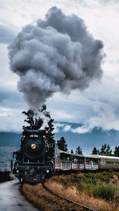 Smoke blowing train