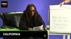 Lil Jon Answers Your Questions About Legal Marijuana