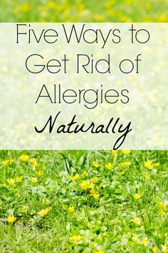 5 Ways to Get Rid of Seasonal Allergies Naturally - Life Made Full