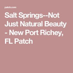 New Port Richey, FL - With its natural beauty Salt Springs also hold a vast amount of history, but, due to limited access, still remains a hidden secret to most. Florida Springs, New Port Richey, Natural Beauty, Salt, Nature, Naturaleza, Salts, Nature Illustration, Off Grid