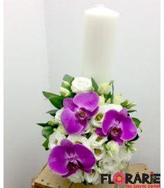 Terraria, Vase, Home Decor, Plant, Terrariums, Decoration Home, Room Decor, Vases, Home Interior Design