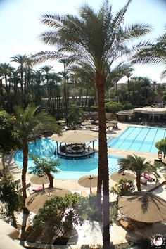 The Global Girl Travels: The beautiful outdoor pool at The Sofitel Winter Palace luxury hotel in Luxor, Egypt.