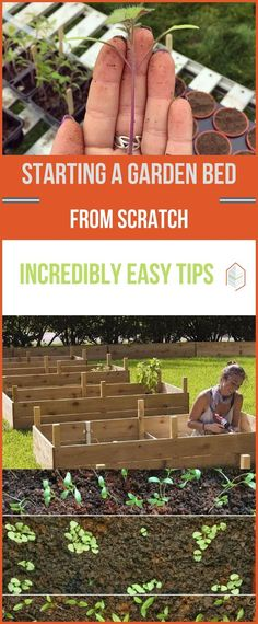 Starting a Garden Bed from Scratch: Tips for Beginners. Starting a garden bed from scratch? Here's how. If you happen to love gardening. but scared off by time constrains or by digging on the ground. don't worry. #urbangardening #urbanfarming #gardening # #raisedbedgardenforbeginners