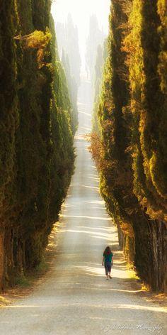 Tuscany | Josh Trefethen Photography