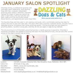Salon Spotlight January 2013, Dazzling Dogs and Cats