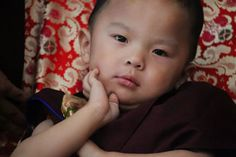 Palyul Ling, a Nyingmapa Center of Tibetan Buddhism - It is a matter of great joy and pleasure to inform all the disciples and well-wishes of His Holiness Penor Rinpoche residing around the globe that our beloved root guru has been reborn in Tibet.