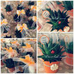 Piccole piantine di Aloe,vasetto rivestito in feltro arancio,quadrifoglio in gesso profumato, coccinella in legno di buon augurio,confetti sfumati nelle tonalità dell'arancio