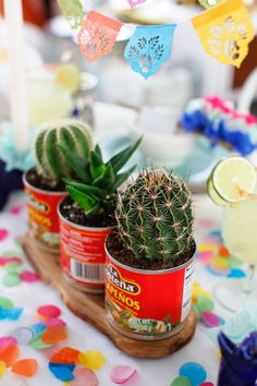 Succulent centerpiece for a Cinco de Mayo party