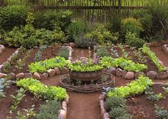 This Kitchen Garden uses rustic fencing, stone bed lines & a central focal point for a simple, elegant design. A border of  herbs & perennials keeps it looking lush.