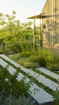 A map of the best contemporary landscape architecture projects from around the world. Farmhouse Landscaping, Modern Landscaping, Backyard Landscaping, Back Gardens, Outdoor Gardens, Landscape Architecture, Landscape Design, Contemporary Landscape, Garden Paving