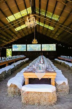 How to have a horsey wedding   Stuff.co.nz