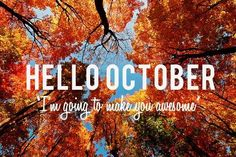 :: how are you going to make October awesome? ::