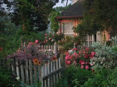 Late afternoon in a cottage garden