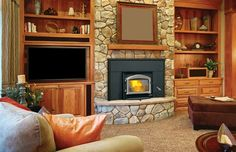 Napoleon Oakdale Deluxe EPA Certified Wood Fireplace Insert Up to 55 000 BTUs complete with Heat Circulating Blower in Metallic ** Visit the image link more details. (This is an affiliate link and I receive a commission for the sales) Wood Burning Insert, Wood Insert, Fireplace Hearth, Stove Fireplace, Hearth Rugs, Gas Fireplaces, Electric Fireplaces, Fireplace Screens, Outdoor Fireplaces