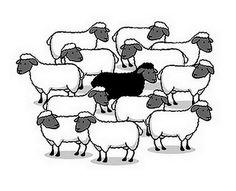 🐑 Het zwarte schaap (van de familie) zijn 🐑Betekenis: iemand die een beetje buiten de familie staat qua gedrag 🐑E: to be the black sheep (of the family) 🐑F: être la brebis galeuse (de la famille) / être le mouton noir (de la famille) 🐑D: das schwarze Schaf (in der Familie) sein 🐑S: ser la oveja negra (de la familia) 🐑I: essere la pecora nera (della famiglia) 🐑P: ser a ovelha negra (da família).