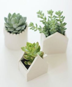 ideas diy para decorar macetas con arcilla blanca Fimo