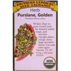 Golden Purslane Certified USDA Organic Seeds by Southern Exposure Seed Exchange. Portulaca Oleracea, Organic Seeds, Seed Packets, Eating Raw, Edible Garden, Back To Nature, Homeopathy, Summer Salads, Mexican Food Recipes