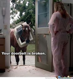 Horse Memes. Best Collection of Funny Horse Pictures