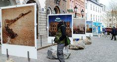 Картинки по запросу outdoor exhibitions