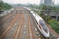 Will China's travellers hear the 'all aboard' call from the world's largest high-speed rail network? High Speed Rail, Hongkong, Speed Training, Sad Day, Travel Pictures, Travel Pics, Railroad Tracks, China, Japan