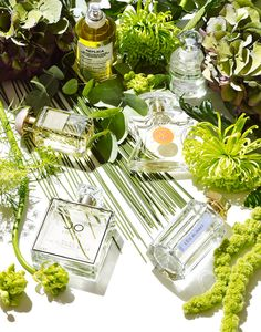023 3 Still Life Product Photographer Pedersen beauty cosmetic fragrance perfume eau flowers foliage sunshine summer scent