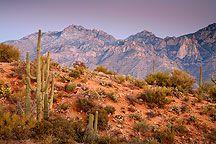Santa Catalina Mountains - Tucson