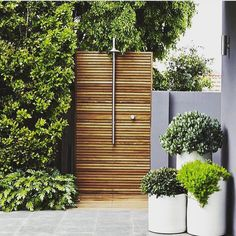 awesome unique design for an outdoor shower. light wood contrasting the green trees.