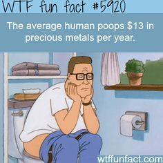 Human poop contains precious metals - WTF fun facts