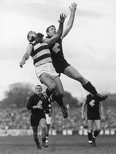John Nicholls v Polly Farmer Carlton Afl, Carlton Football Club, Australian Football, Go Blue, Great Team, Football Team, Rugby, Athlete, Blues