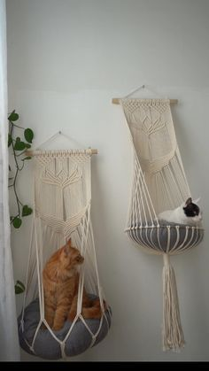 Cat Hammock, Hanging Hammock, Cat House Diy, Macrame Projects, Diy Projects, Cat Room, Macrame Design, Pet Furniture, Cat Supplies