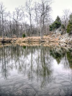 Winter Pond On Billy Goat Trail by Francis Sullivan