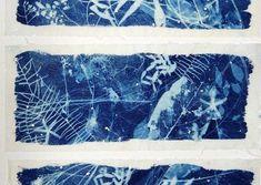Forest Detritus - (detail) framed x Sun Prints, Alternative Photography, Torn Paper, Cyanotype, Ceramic Artists, Art Object, Art Gallery, Tapestry, Watercolor